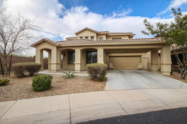 15476 W Cottonwood Circle, Surprise, AZ 85374 (MLS #5730312) :: The AZ Performance Realty Team