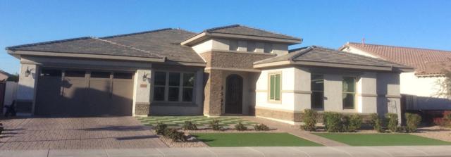 3350 E Azalea Drive, Chandler, AZ 85286 (MLS #5730621) :: The Wehner Group