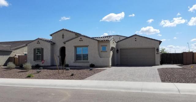 18609 W Minnezona Avenue, Goodyear, AZ 85395 (MLS #5730926) :: Occasio Realty