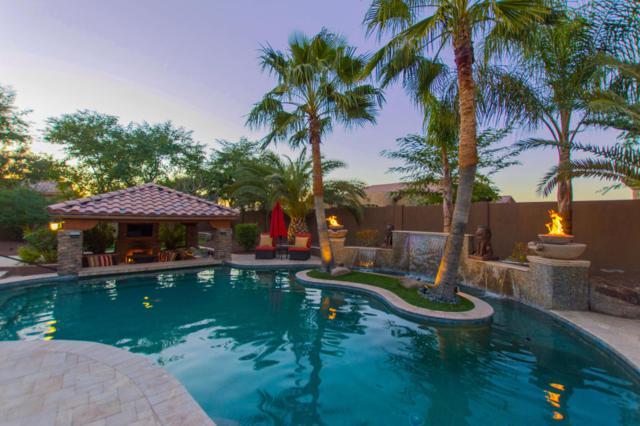 11310 E Elmhurst Drive, Chandler, AZ 85249 (MLS #5730964) :: CANAM Realty Group