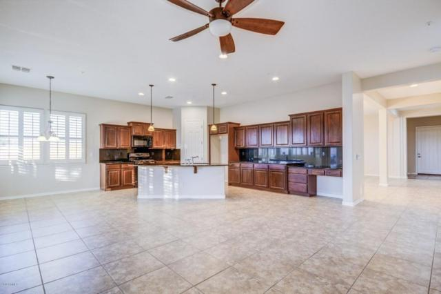 13518 S 183RD Drive, Goodyear, AZ 85338 (MLS #5730978) :: The Wehner Group