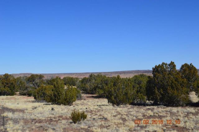 tbd Tbd, Shumway, AZ 85901 (MLS #5731162) :: The Garcia Group @ My Home Group