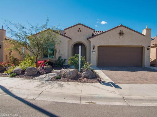21614 N 266TH Lane, Buckeye, AZ 85396 (MLS #5731252) :: The AZ Performance Realty Team