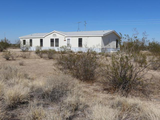 30906 W Lynwood Street, Buckeye, AZ 85396 (MLS #5731374) :: Occasio Realty