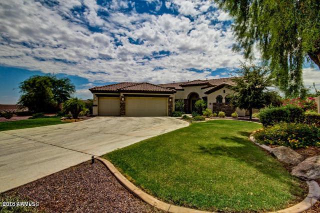 18305 W Montebello Avenue W, Litchfield Park, AZ 85340 (MLS #5731389) :: Occasio Realty