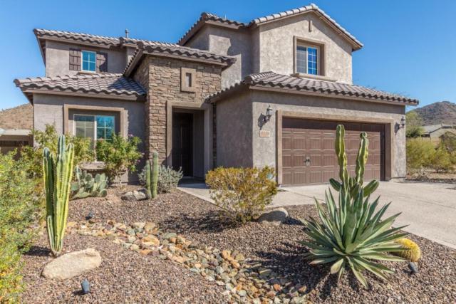 1228 W Spur Drive, Phoenix, AZ 85085 (MLS #5731650) :: Occasio Realty