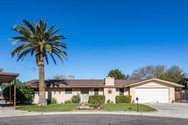 19426 N 15TH Drive, Phoenix, AZ 85027 (MLS #5731693) :: Occasio Realty