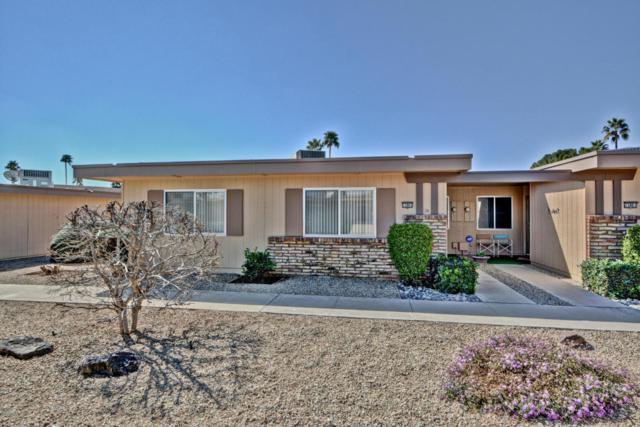 13863 N 111TH Avenue, Sun City, AZ 85351 (MLS #5731758) :: Private Client Team