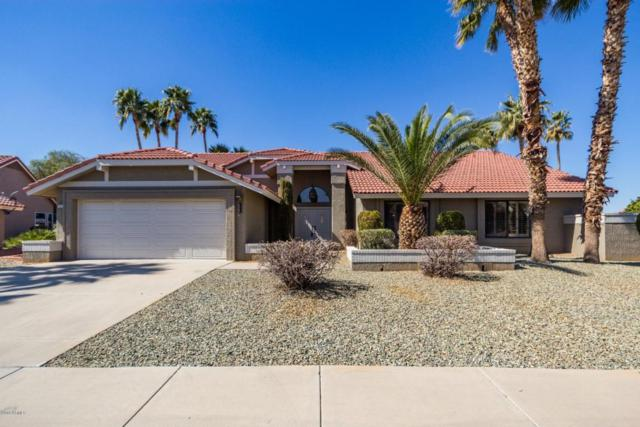 14214 W Meadowood Drive, Sun City West, AZ 85375 (MLS #5731975) :: Private Client Team