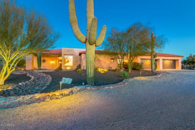 925 S Cottontail Court, Apache Junction, AZ 85119 (MLS #5732150) :: The Jesse Herfel Real Estate Group