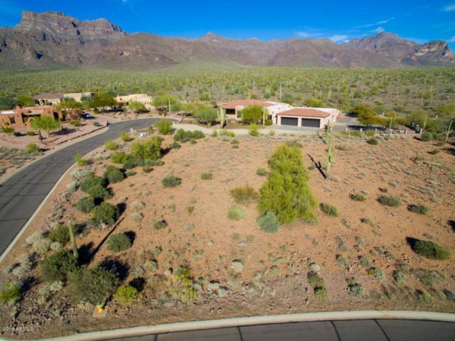 937 S Cottontail Court, Apache Junction, AZ 85119 (MLS #5732223) :: The Jesse Herfel Real Estate Group