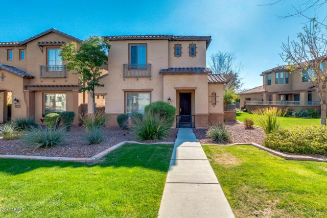 843 W Village Parkway, Litchfield Park, AZ 85340 (MLS #5732243) :: Occasio Realty