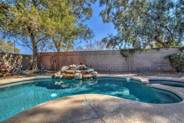 33273 N Sonoran Trail, Queen Creek, AZ 85142 (MLS #5732267) :: The Wehner Group