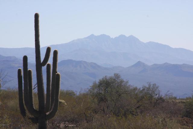 13xxx E Aloe Vera Drive, Scottsdale, AZ 85262 (MLS #5732340) :: Brett Tanner Home Selling Team