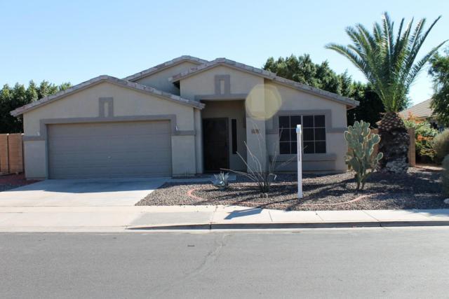 11063 E Catalina Avenue, Mesa, AZ 85208 (MLS #5732493) :: Sibbach Team - Realty One Group