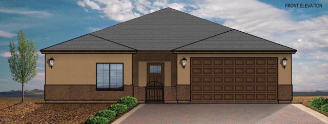 1825 E Illini Street, Phoenix, AZ 85040 (MLS #5733267) :: The Wehner Group