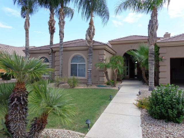 615 W San Marcos Drive, Chandler, AZ 85225 (MLS #5733303) :: Occasio Realty