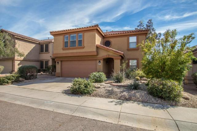 5035 E Roy Rogers Road, Cave Creek, AZ 85331 (MLS #5733450) :: The Everest Team at My Home Group