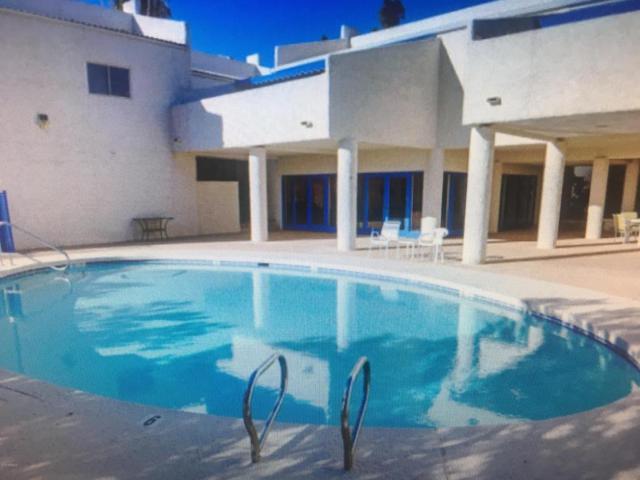 1161 E Sandpiper Drive E #221, Tempe, AZ 85283 (MLS #5733548) :: Private Client Team
