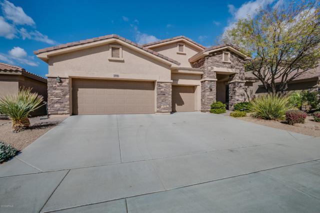 2410 W Barbie Lane, Phoenix, AZ 85085 (MLS #5733611) :: Occasio Realty