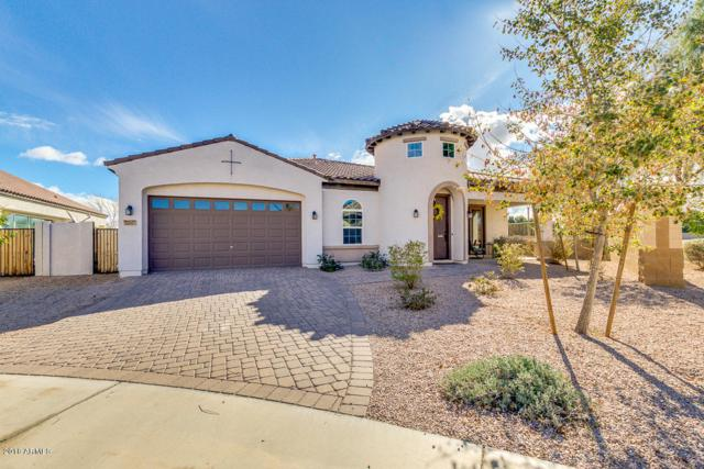 22597 E Pecan Court, Queen Creek, AZ 85142 (MLS #5733613) :: Occasio Realty