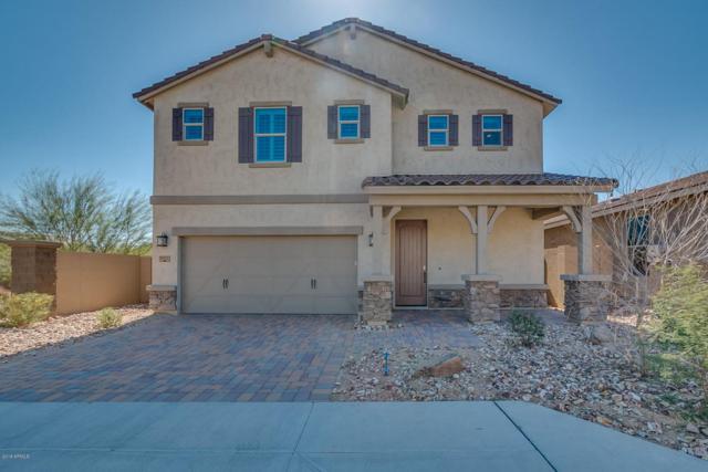 2943 W Thorn Tree Drive, Phoenix, AZ 85085 (MLS #5733777) :: Occasio Realty
