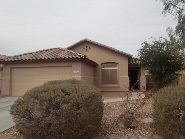 22946 W Morning Glory Street, Buckeye, AZ 85326 (MLS #5733880) :: Desert Home Premier