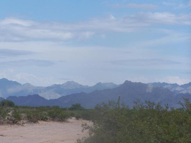 0 W Becky Drive, Maricopa, AZ 85139 (MLS #5733921) :: Brett Tanner Home Selling Team