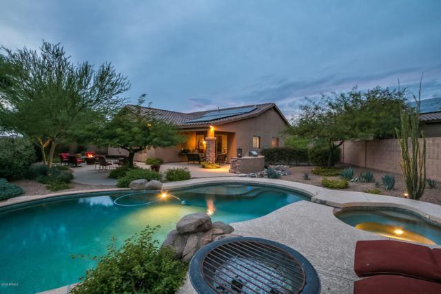 10579 E Salt Bush Drive, Scottsdale, AZ 85255 (MLS #5733988) :: Occasio Realty