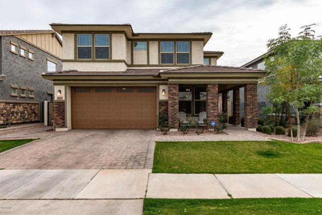 4377 E Amber Lane, Gilbert, AZ 85296 (MLS #5734039) :: The Bill and Cindy Flowers Team