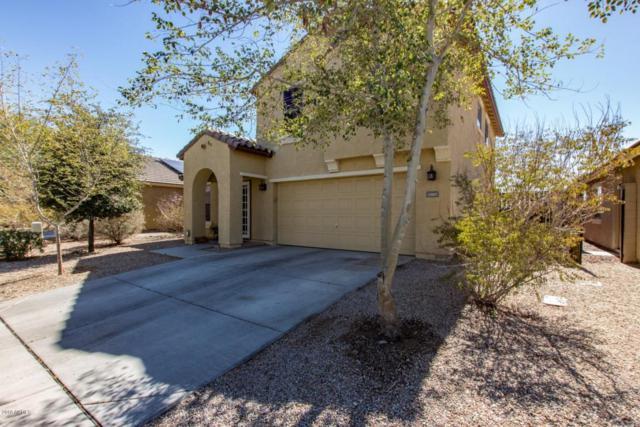 23807 W Lumbee Street, Buckeye, AZ 85326 (MLS #5734079) :: Occasio Realty