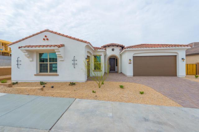 7718 S 42ND Way, Phoenix, AZ 85042 (MLS #5734101) :: My Home Group
