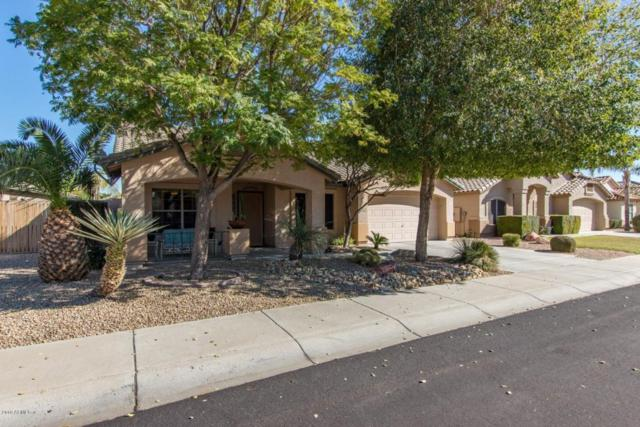 17405 N Cassi Drive, Surprise, AZ 85374 (MLS #5734359) :: Occasio Realty