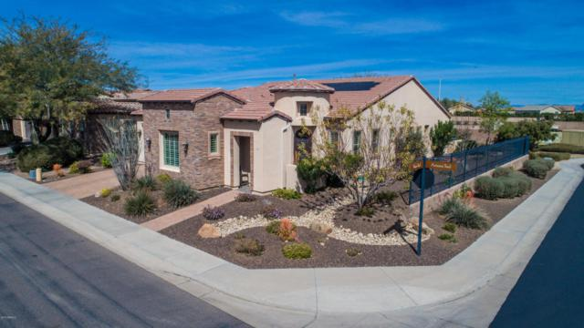 1356 E Artemis Trail, San Tan Valley, AZ 85140 (MLS #5734876) :: The Wehner Group
