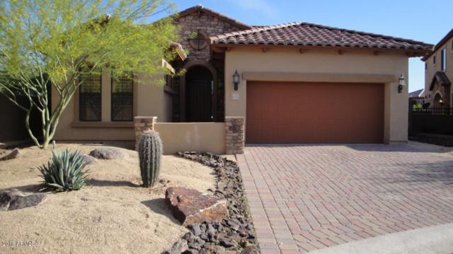 6937 E Sierra Morena Circle, Mesa, AZ 85207 (MLS #5734908) :: The Kenny Klaus Team