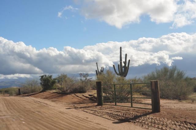 148XX E Wildcat Drive, Scottsdale, AZ 85262 (MLS #5735008) :: Lifestyle Partners Team