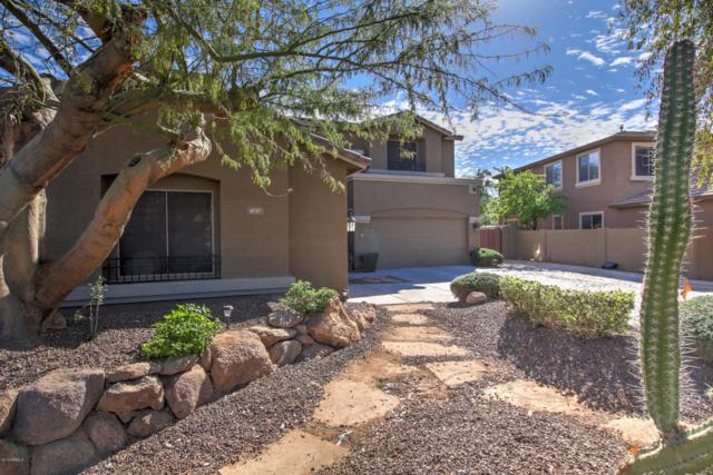 4737 E Firestone Drive, Chandler, AZ 85249 (MLS #5735103) :: Occasio Realty