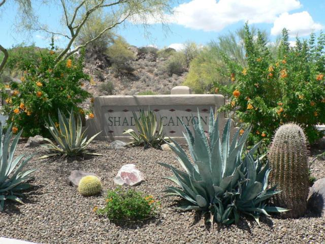 14507 E Shadow Canyon Drive, Fountain Hills, AZ 85268 (MLS #5735222) :: The Kenny Klaus Team