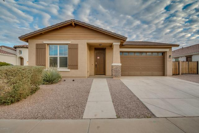 22356 E Cherrywood Drive, Queen Creek, AZ 85142 (MLS #5735738) :: Occasio Realty