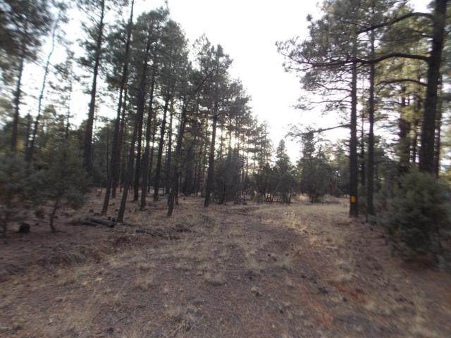 2778 Canyon Ridge Road, Overgaard, AZ 85933 (MLS #5735853) :: Yost Realty Group at RE/MAX Casa Grande