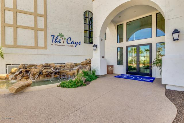 2511 W Queen Creek Road #132, Chandler, AZ 85248 (MLS #5735855) :: Revelation Real Estate