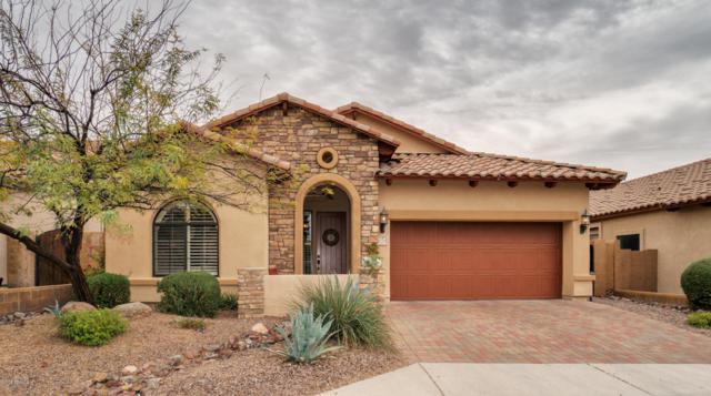 7219 E Nathan Street, Mesa, AZ 85207 (MLS #5735980) :: The Kenny Klaus Team