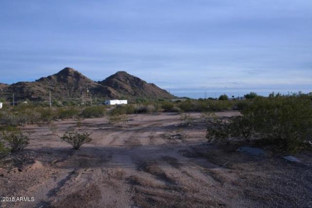 435 S Tusa Road, Maricopa, AZ 85139 (MLS #5736060) :: Brett Tanner Home Selling Team