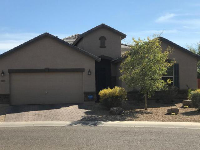 4233 W Beautiful Lane, Laveen, AZ 85339 (MLS #5736343) :: Occasio Realty