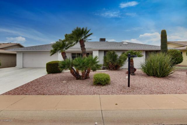 18210 N Willowbrook Drive, Sun City, AZ 85373 (MLS #5736361) :: Private Client Team
