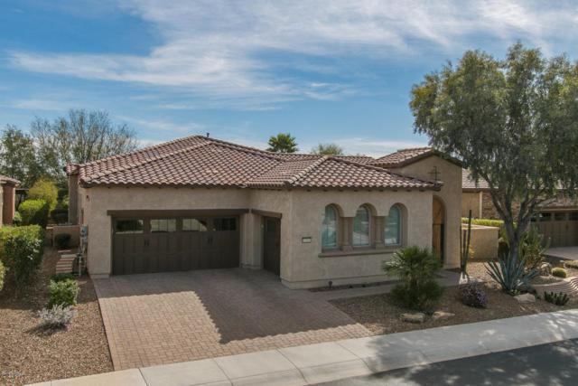 13065 W Steed Ridge, Peoria, AZ 85383 (MLS #5736469) :: Desert Home Premier