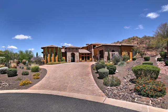 4361 N Santiago Circle, Mesa, AZ 85215 (MLS #5736484) :: RE/MAX Excalibur