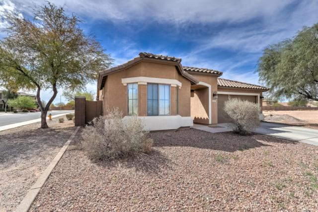 1677 E Prickly Pear Place, Casa Grande, AZ 85122 (MLS #5736518) :: Sibbach Team - Realty One Group