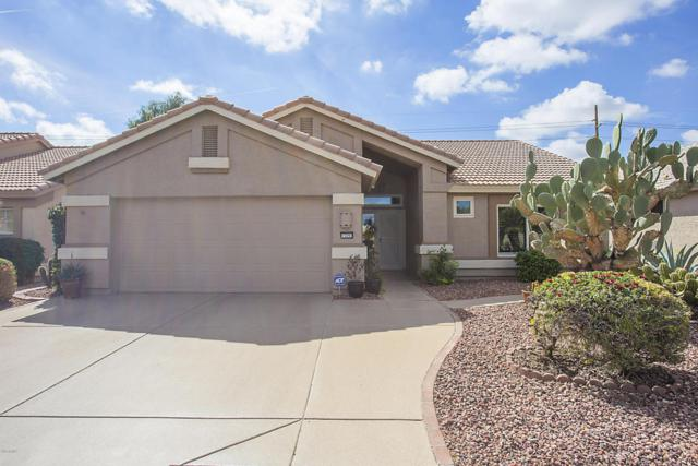 15293 W Verde Lane, Goodyear, AZ 85395 (MLS #5736641) :: Kortright Group - West USA Realty