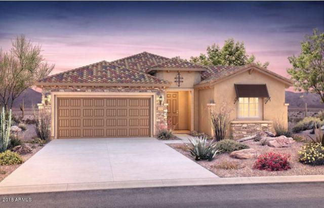 20614 N 274TH Avenue, Buckeye, AZ 85396 (MLS #5736658) :: Santizo Realty Group